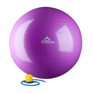 Puprle Stability Ball